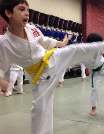 Seichou Karate Ltd.