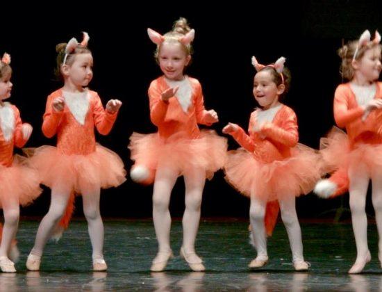 Ballet Academy Lincoln Park