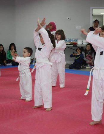 Canadian Taekwondo Centre