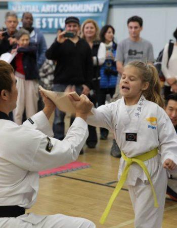 Han Martial Arts
