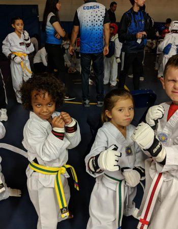 White Tiger Taekwondo