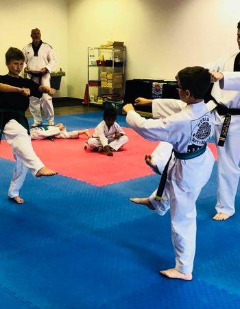 World Martial Arts Academy – O'Fallon